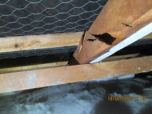 building inspections hawkes bay