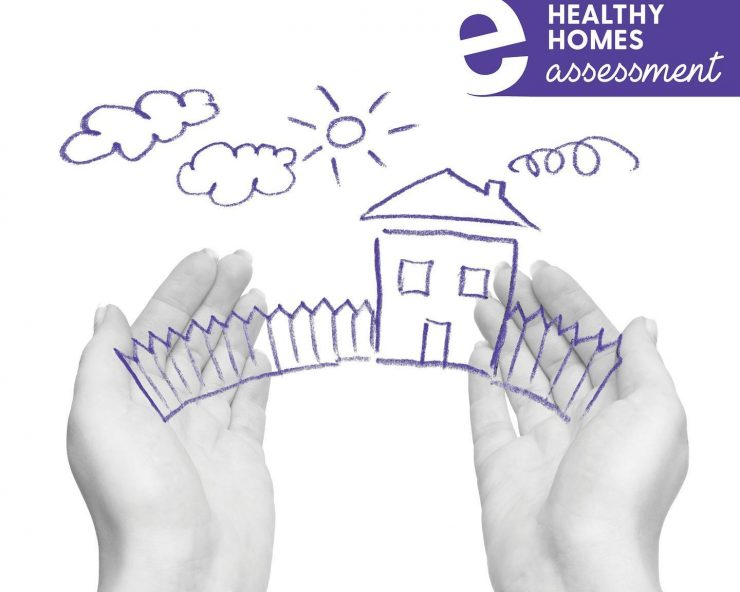 Healthy Homes Surveys
